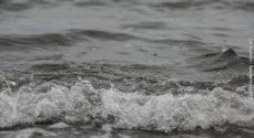 Forurening udløser et badeforbud ved Himmark Strand