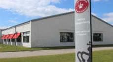 17-årig sigtet for voldtægt af ældre mand i Sønderborg