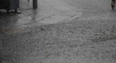 DMI varsler kraftig regn