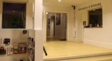 Sønderborghus: Halsbetændelse spænder ben for aftenens koncert med Love Shop