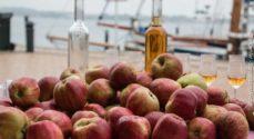Gråsten Æblefestival: HonningBanden laver teatersport for og med børn