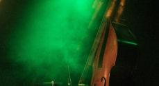 Dansk Musikerforbunds lokale medlemmer spiller gratis koncerter