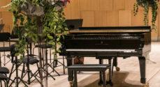 Den 3. november er der igen Promusica-koncert - her er programmet