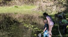 Kommunen vil genoprette vandløb og vådområder