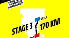 Mest sandsynligt at dansk Tour-start flyttes til 2022