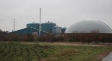 Nature Energy venter stadig på grønt lys til at bygge biogasanlæg i Kværs