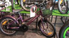 Kun for børn: Hvilket dyr passer med din næste nye cykel