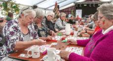Gråsten Æblefestival inviterer til banko i Marina Fiskenæs