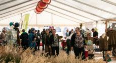 Billeder: Æblefestivallens mange boder