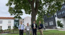 Den lokale sparekasse planter flere træer
