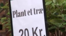 Sønderborg bakkede flot op om indsamlingen 'Danmark planter træer'