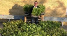 Brugsforeningen for Als og Sundeved bakker op om 'Danmark Planter Træer'