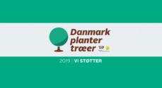 Sønderborg har indsamlet næsten en kvart million kroner til 'Danmark planter træer'