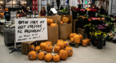 Halloween: Lørdag blev der skåret uhyggelige ansigter i græskar