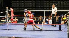 Billeder: Fight Night