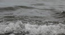 Rapport: Massiv olieforurening ved Himmark Strand