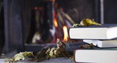 Biblioteket inviterer til 'Rundt om kaminen'
