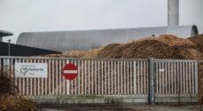 Tom Hartvig Nielsen: Sønderborg Varme brænder flis når varmebehovet er højt