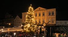 Ingen juletræstænding på Rådhustorvet i år