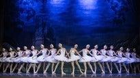 Alsion: Russiske balletdansere opfører Svanesøen