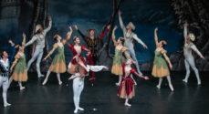 National Balletten fra Moskva dansede Svanesøen