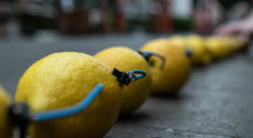 AGS-elever i Guiness Rekordbog - onsdag fik de liv i deres citronbatteri