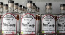 Dybbøl Gin fra Sønderborg Distillery scorer endnu en pris