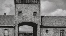 Foredrag: Det er 75 år siden tyskernes berygtede KZ-lejr i Auschwits blev lukket