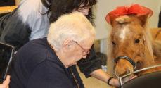 Ponyen Elsa spredte smil og glæde i Amaliehaven