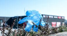 Miljø-svineri: Bilka-kunder smider plastic-handsker i det fri