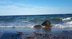 Lad være med at bade ved Købingsmark Strand