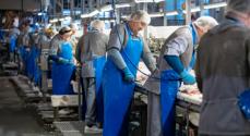Slagteriet i Blans ansætter 45 nye medarbejdere