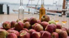Gråsten Æblefestival aflyser