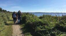 LOF-kursus: Natur & Suppe - vandreture med spisning undervejs