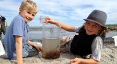 5. august er Naturfamilier ved Den Sorte Strand