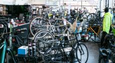 Fri Bikeshop har sendt masser af cykler ud på cykelstierne