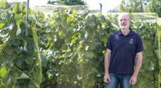 Domaine Nyballe: Iver Dall i Skelde lave rødvin som han selv kan li' den