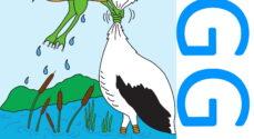 Læserindlæg: KGGOs aktiviteter er hårdt ramt af Corona-restriktionerne