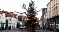Se med når juletræet tændes på Rådhustorvet