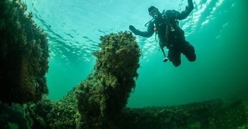Tag med Poseidon-dykkerne op opdagelse under overfladen
